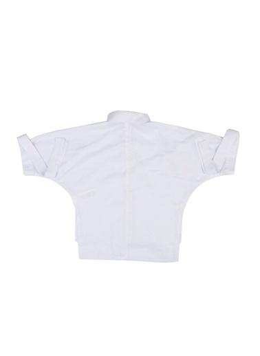 Gömlek-Puledro